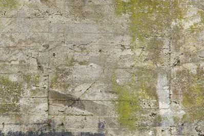 Concrete Bunker Wall Textures Images Amp Pictures