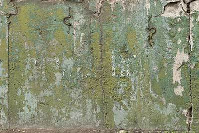 Concrete Wall Textures: Background Images & Pictures