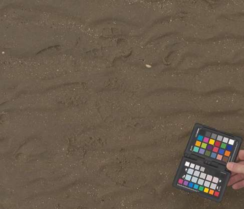 2x2m 4x4m photogrammetry sand scan scanned displacement heightmap wet netherlands
