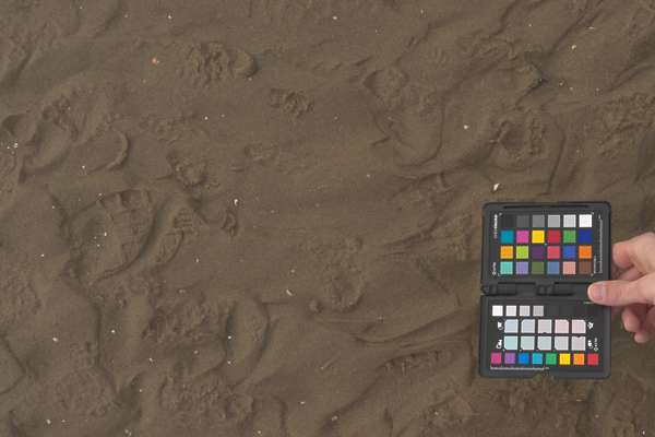 3x3m srgb photogrammetry sand beach scan scanned displacement heightmap wet netherlands