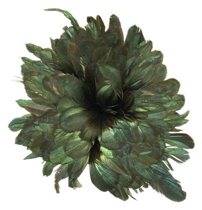 feathers chicken dark black green round brush feather