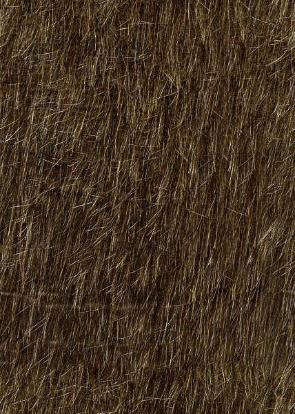 Fur0010 Free Background Texture Fur Animal Skin Hairs