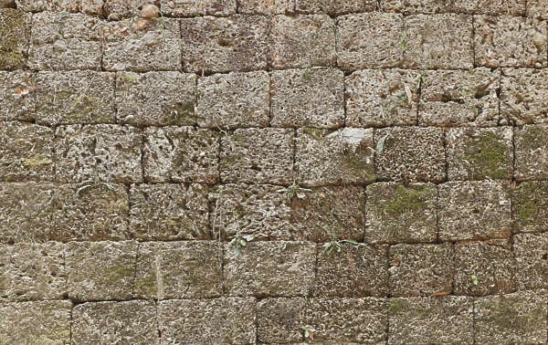 cambodia brick large mossy weathered