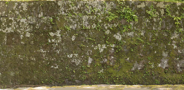 japan brick medieval mossy moss old weathered castle wall