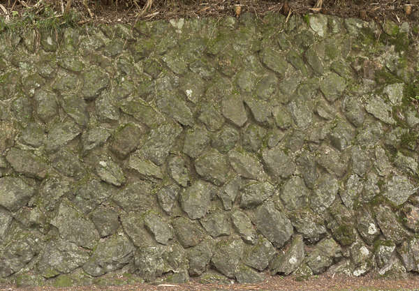brick medieval old mossy overgrown japanese japan