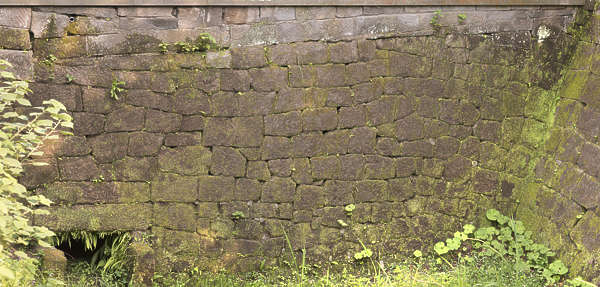 brick bricks medieval old castle wall Japan Japanese moss mossy