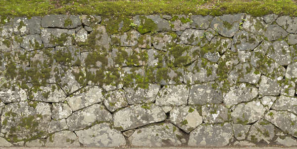 brick bricks medieval old castle wall Japan Japanese moss mossy groutless