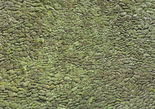 brick medieval mossy round old moss china