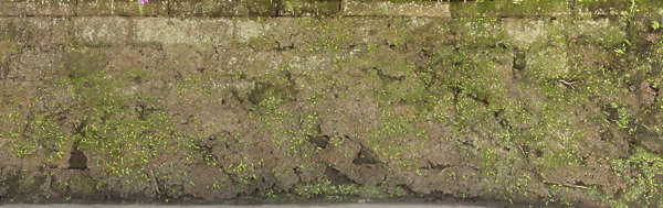 moss mossy wall japan brick old medieval worn castle wall blocks