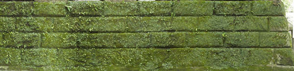 brick bricks medieval old castle wall Japan Japanese moss mossy overgrown