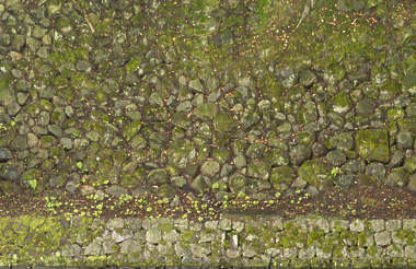 brick bricks medieval old castle wall Japan Japanese moss mossy boulders