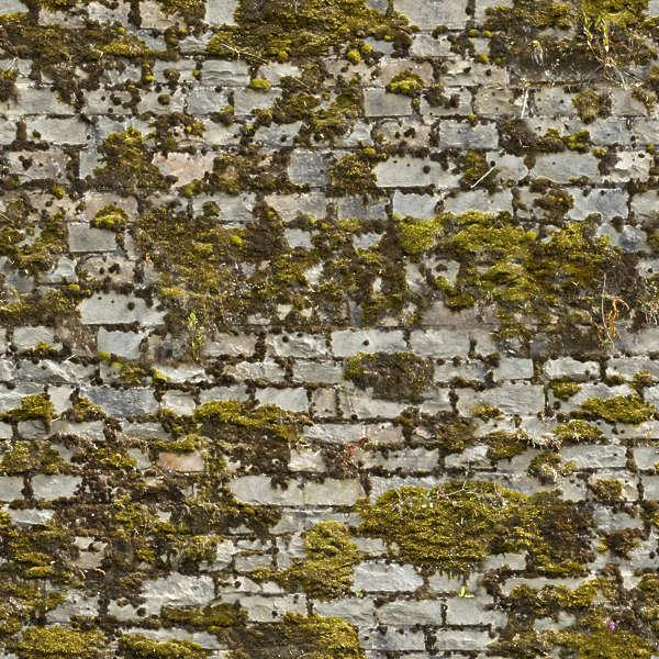 Brickoldovergrown0018 Free Background Texture Brick