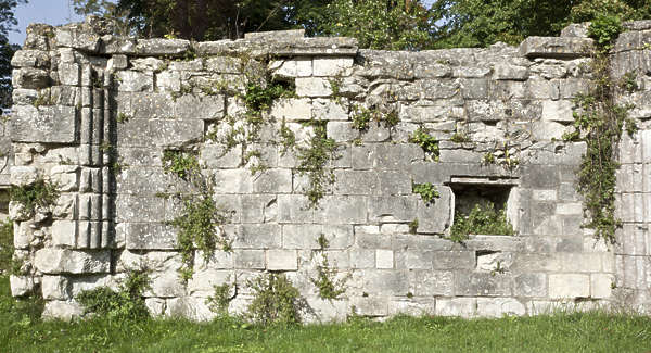 old medieval overgrown wall brick stone