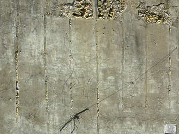 concrete bare old