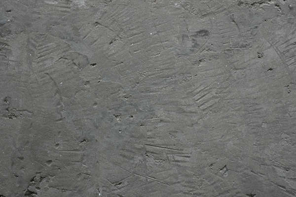 concrete bare plaster stucco rough