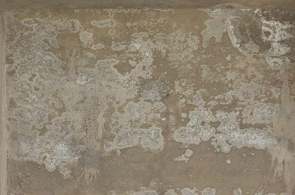 Concretedirty0352 Free Background Texture Concrete