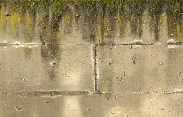 concrete dirty leaking moss