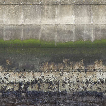 concrete dirty old gradient water harbor harbour