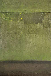 concrete dirty green moss old