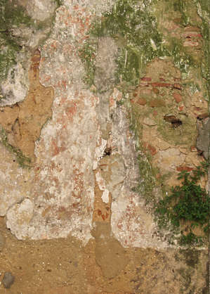 concrete dirty green moss plaster old