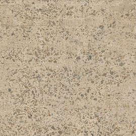 Rough Concrete And Cement