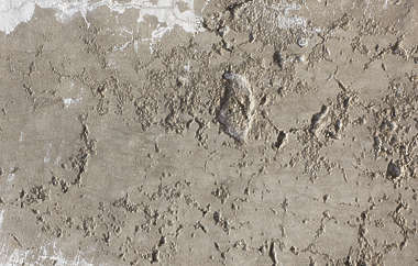 concrete rough bare plaster