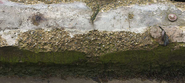 concrete rough damaged mossy old bare UK
