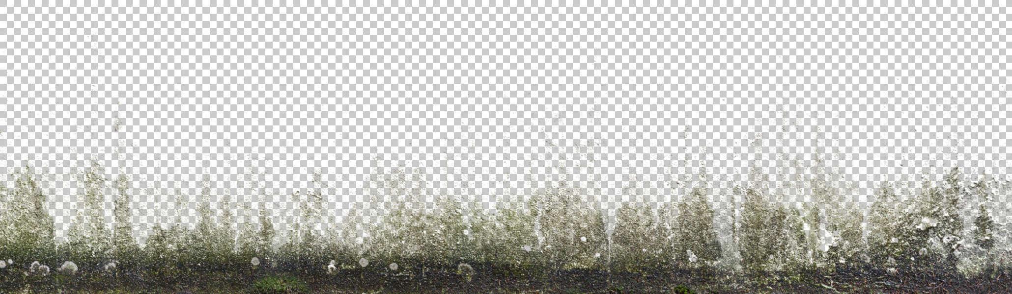 Decalbottom0008 Free Background Texture Decal Masked