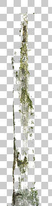 decal masked alpha stain mossy leaking isolated