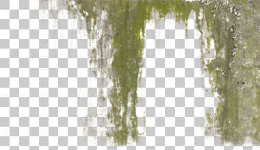 decal grunge leaking leak plaster stain masked alpha isolated
