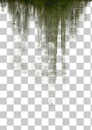 decal masked grunge grungemap leaking mossy alpha isolated