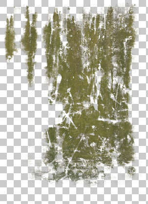 Wood Texture Seamless Hd