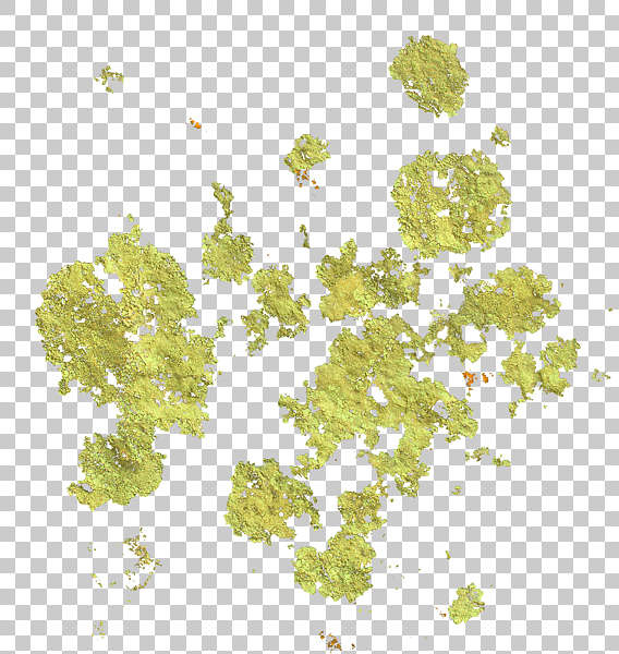 Decalsstain0021 Free Background Texture Moss Decal