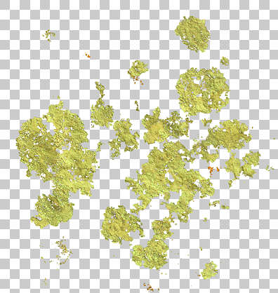 moss decal stain masked alpha isolated