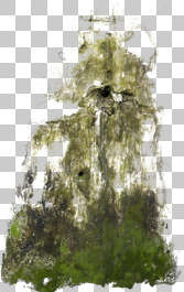 stain mossy moss decal masked alpha morocco africa sewer isolated