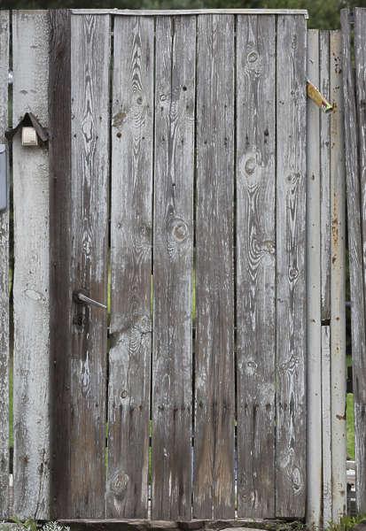 doorswoodsingleold0159 free background texture door