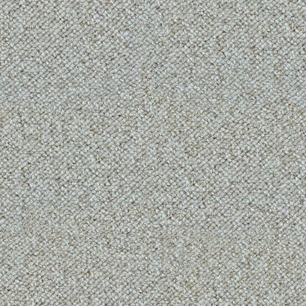 Gray And White Carpet On Wood Floor