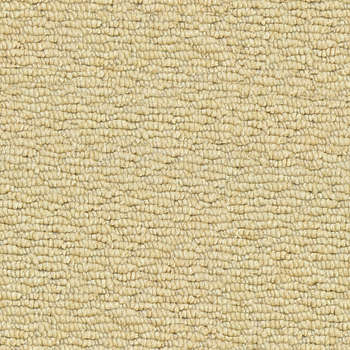 Carpet & Rug Texture: Background Images