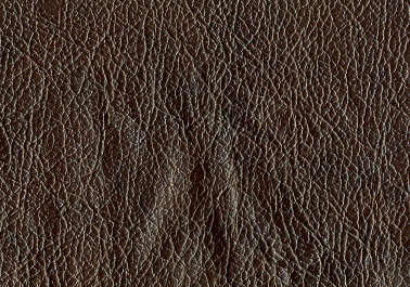 leather rough skin