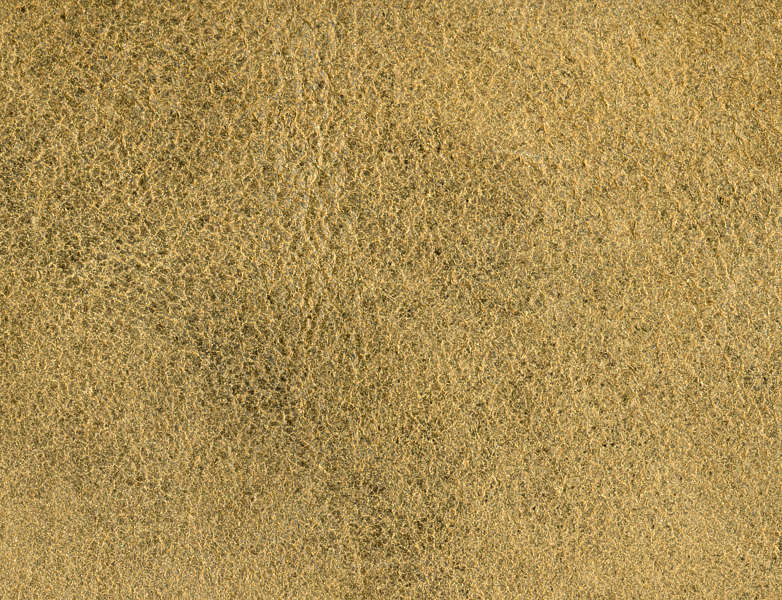 Leather0073 Free Background Texture Leather Back