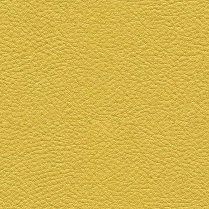 Leather0038 Free Background Texture Leather Fine Skin