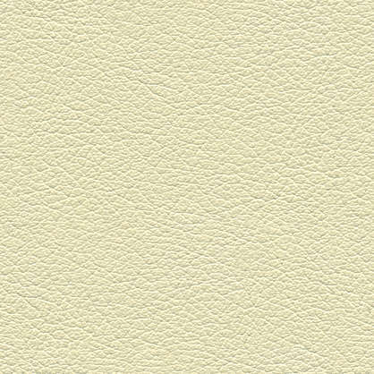 Leather0045 Free Background Texture Leather Skin Fine