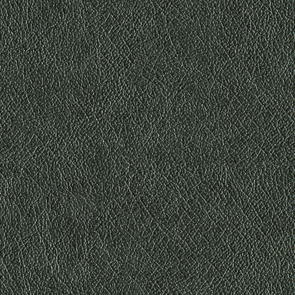 Leather0056 Free Background Texture Leather Fine Black