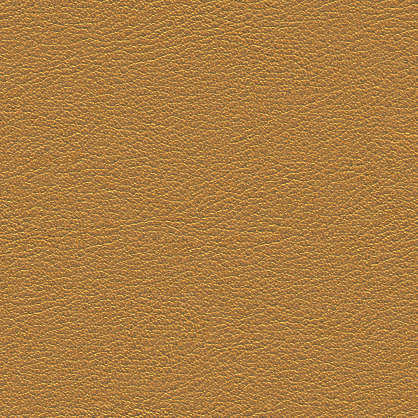 Leather0064 Free Background Texture Leather Skin Fine