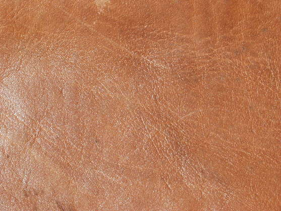 leather brown glossy shiny