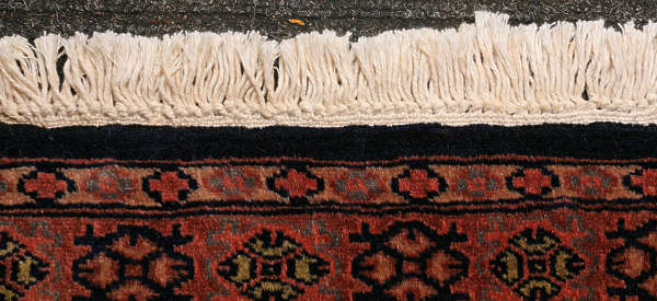 carpet persian perzian edge frill frilled frilly rug