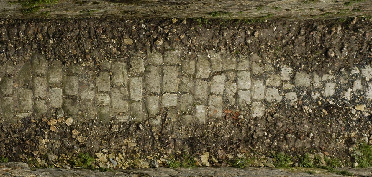 Floorsmedieval0087 Free Background Texture Tiles Brick