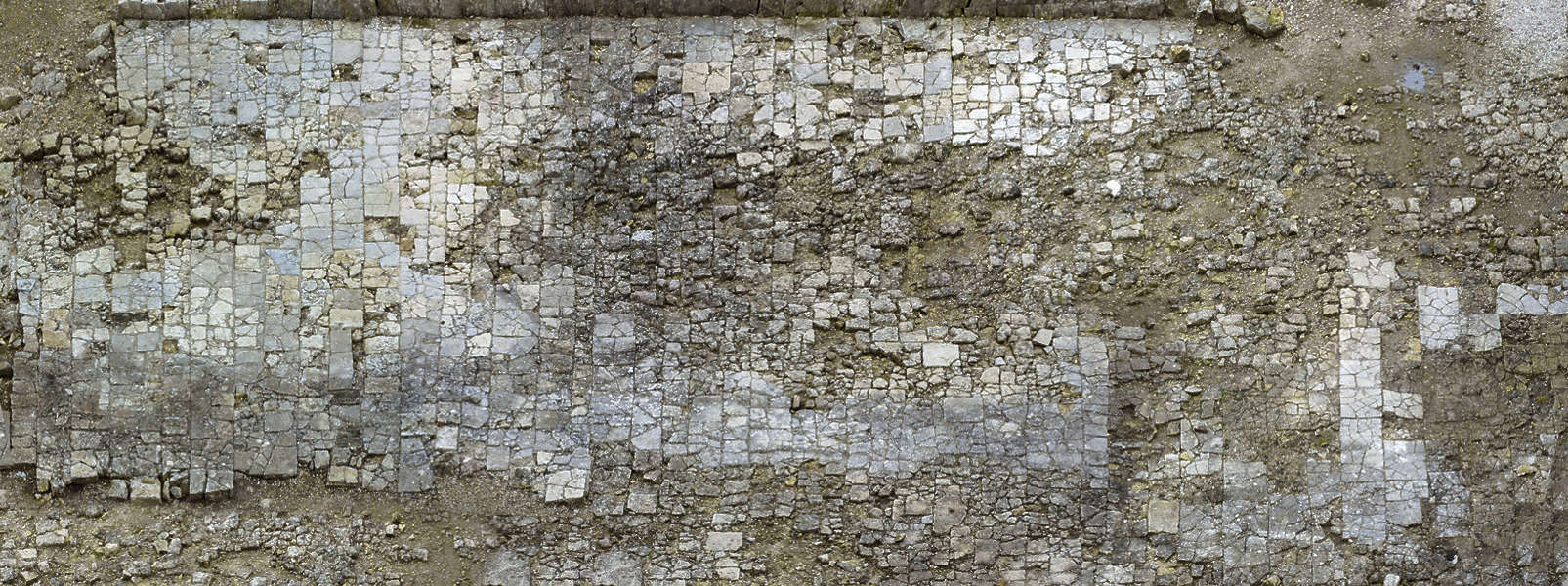 Floorsmedieval0024 Free Background Texture Brick Tiles