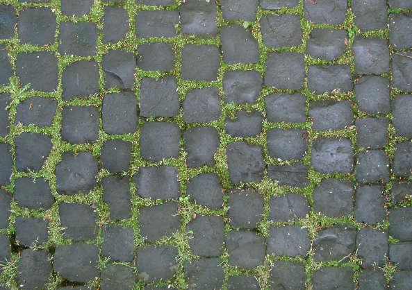 floorsregular0181 free background texture brick floor