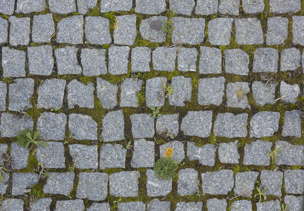 cobblestone floor cobble stone regular mossy